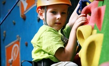 Rock-Climbing Pass for Two, Parent and Child Lesson, or Rock-Climbing Summer Camp at North Wall (Up to 53% Off)