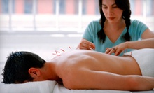One Acupressure Massage or Consultation with One or Three Acupuncture Treatments from Minal Patel L.Ac. (Up to 87% Off)