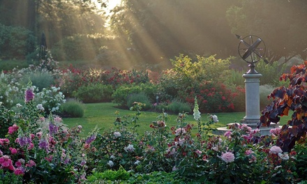 Garden Visit for Two or Four at the Morris Arboretum (38% Off)