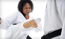 5, 10, or 20 Drop-In Brazilian Jujitsu Classes at East Coast United BJJ (Up to 90% Off)