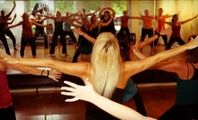 10 or 20 Nia Technique Classes at Nia Baltimore (Up to 78% Off)