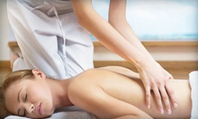 One 60- or 90-Minute Mobile Swedish or Deep-Tissue Massage from Full Body Massage (Half Off) 