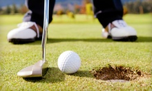 One or Three 60-Minute Golf Lesson for One or Two People at Bing Maloney Golf Course (Up to 59% Off)