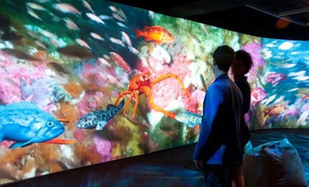 Art, History, and Science Museum Visit for Two, Four, or Six at Oakland Museum of California (Half Off)