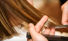Cut, Conditioning, and Blow-Dry with Optional Partial Highlights at Styles of Elegance Salon (Up to 57% Off)
