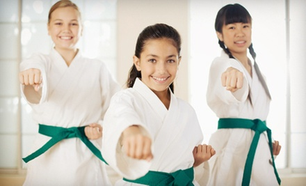 5 or 10 Kids' Karate Classes at Voltage (Up to 71% Off)