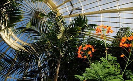 Family, Grandparent, or Individual Membership to Buffalo Botanical Gardens (Up to Half Off)