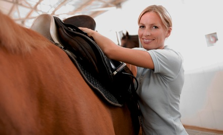 One or Three Private 60-Minute Horseback-Riding Lessons at Twisted Pine Farm (Up to 57% Off)