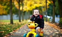 $49 for Photo-Shoot Package from Alex Studio ($458 Value)