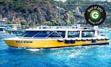 45-Minute Tour for Two or Four on a Glass-Bottom or Semisubmersible Boat from Catalina Adventure Tours (Up to 65% Off)