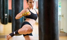 6 or 10 Kickboxing, MMA, or Self-Defense Classes at AmeriKick Martial Arts (76% Off)