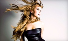 Haircut and Style with Optional Single-Process Color at Ash Salon (Up to 58% Off)