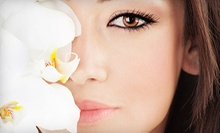 Permanent Eyeliner, Lip Liner, or Eyebrow Makeup at Miracle Skin and Wellness (Up to 71% Off). Two Options Available.