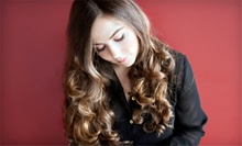 Haircut and Style with Optional Partial Highlights at Hair Design by Christina Albera (45% Off)