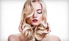 Haircut and Conditioning Treatment with Optional Partial or Full Highlights at Shear Delight by Jess (Up to 51% Off)