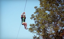 Zipline Tour for One or Two or Zipline Package with Campfire and Hayride at Cedar Mountain Lodge (Up to 52% Off)