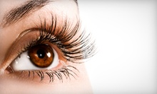 Full Set of Synthetic-Mink Eyelash Extensions with Optional Refill at Simply Beautiful Lashes (Up to 67% Off)
