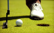 One, Two, or Three 60-Minute Golf Lessons for Up to Two at Bing Maloney Golf Course (Up to 59% Off)