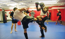10 or 20 Mixed-Martial-Arts Classes at Alpha Omega MMA (Up to 85% Off)