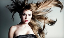 Haircut Package with Optional Highlights or Color, or a Brazilian Blowout at Studio D Hair Design (Up to 67% Off)