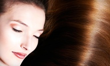 Cut with Optional Highlights, All-Over Color, or Keratin Treatment at Liana’s Beauty Fix (Up to 71% Off)