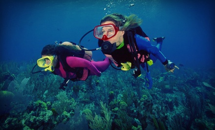 $25 for an Introductory Class at Upstate Scuba ($50 Value)