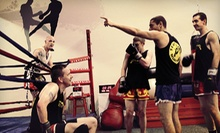 5 or 10 Muay Thai Classes at Team Link Muay Thai (Up to 80% Off)