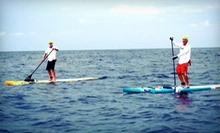 Half-Day Standup Paddleboard or Kayak Rental from Liquid Surf and Sail (Up to 52% Off)