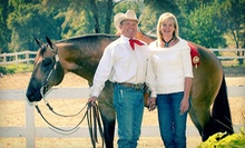 One or Three 60-Minute Horseback-Riding Lessons at Gord Wadds Show Horses (Up to 57% Off)