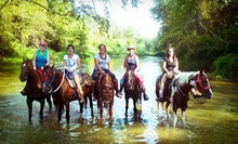 Five-Hour Horseback Trail Ride for One, Two, or Four at Loveland Ranch (Up to 53% Off)
