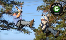 Zipline Adventure for 2 or 4, or Zipline Party for Up to 10 at Zip Nac (Up to 53% Off)