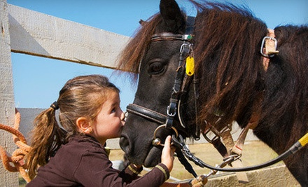 Petting Zoo Visit for Two, Four, or Six with Pony Rides or Farm Party at Little Vine Petting Zoo (Up to 53% Off)