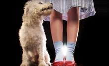 $30 for The Wizard of Oz Stage Performance for Two at Theatre Cedar Rapids on May 2 or 16 (Up to $60 Value)