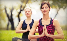 Two Classes or Private Yoga Hike for Up to 15 People from Hiking Yoga (Up to 53% Off)