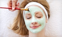 One or Two Groupons, Each Good for One European Facial at Wellness Therapy (Up to 52% Off)