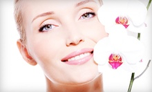 One or Three Microdermabrasion Treatments from Digenis & Thornton Plastic Surgery Institute (Up to 61% Off)