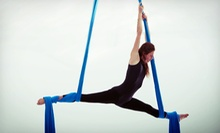 One, Four, or Eight Aerial Fitness Classes, or One Month of Unlimited Classes at Dragon Power Fitness (Up to 69% Off)