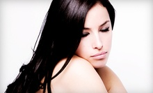 $22 for a Designer Haircut and Blowout with Strengthening Treatment at Fantastic Sams (Up to $45 Value)