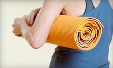 10 Kickboxing, Yoga, or Boot-Camp Classes at New England FastFit (Up to 69% Off)