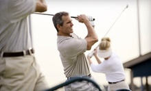 $8 for Two Large Buckets of Driving-Range Balls at Riedy's Tee Time in Lisle ($16 Value)