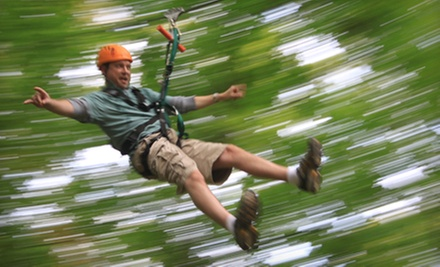 Zipline Tour for Two, Four, or Six at ZipZone (Up to 52% Off)