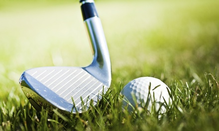 Private Golf Lessons from Justin Schaller Golf Institute at Turf Valley (Up to 51% Off). Four Options Available.