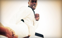 10 or 20 Group Fitness Classes at Action Karate (Up to 88% Off)