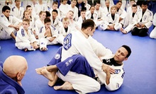 10 or 20 Mixed-Martial-Arts Classes at Renzo Gracie Rockland (Up to 85% Off)