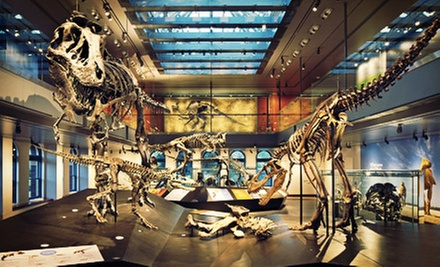 Membership to Natural History Museum of Los Angeles County (Up to 57% Off). Four Options Available.