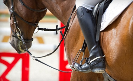 Three or Six Riding Lessons with Optional Horse Training for Your Horse at Montross Quarter Horses, Inc. (Up to 60% Off)