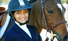 Two or Four Private Horseback-Riding Lessons at High Point Farm (Up to 60% Off)