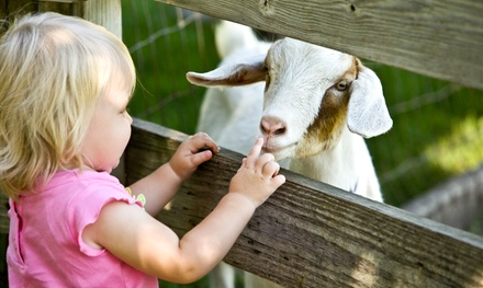 Petting-Farm Visit for One or for Two Kids at Green Meadows Farm (Up to 48% Off)