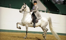 One, Two, or Three 30-Minute Private Horseback-Riding Lessons at Centre Pointe Stables (Up to 64% Off)