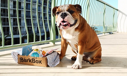 One-, Three-, or Six-Month Subscription for Monthly Delivery of Dog Goodies from BarkBox (Up to 21% Off)